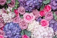 玫瑰花是保加利亚的国花吗?一般什么时候开花?