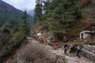 数百登山者被困喜马拉雅山:喜马拉雅山在哪个国家?有多高?海拔多少?