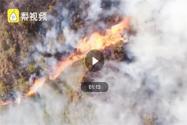 上坟抽烟致百亩山林火灾具体是怎么回事?最后怎么处理的?