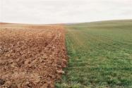 第二轮土地承包到期后再延长30年!具体怎么实施?四川省出台省级试点方案!