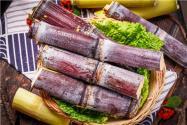 2020年甘蔗多少钱一斤?种植技术有哪些?