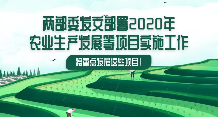 两部委发文部署2020年农业生产发展等项目实施工作 将重点发展这些项目!