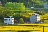 北京市农村还能申请宅基地吗?申请条件及建房标准有哪些?