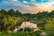 2021新土地管理法实施条例关于农村宅基地的规定:具体有哪些新规定?