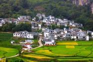 2021年广东惠州市惠东县这些村将被征收!具体是哪些村?附详细名单!