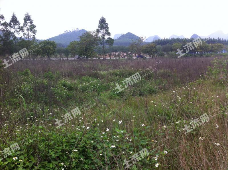 穿山镇下街省道大路边10亩土地转让_60万元_柳州柳江