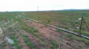 乌兰察布  察哈尔右翼中旗 2000亩 水浇地 出租