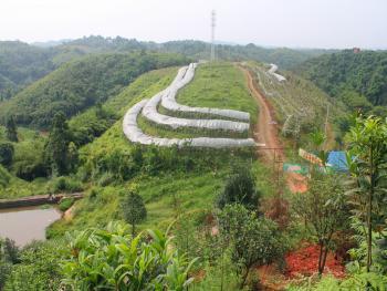 四川泸州aaaa级风景区天仙洞风景区内 45亩 果园 出租 完美配套 即可