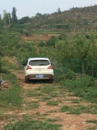临沂沂南县 15亩 畜牧养殖用地 转让