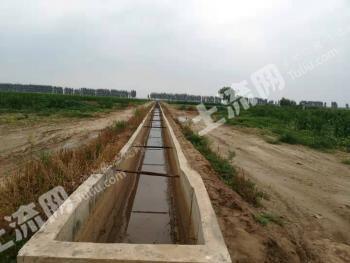 新乡新乡县 2000亩 水浇地 出租