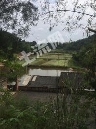成都简阳市3.5亩坑塘出租