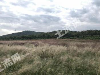 曲靖麒麟区1亩养殖用地-农场转让