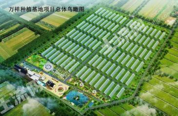 北京房山区150亩温室大棚转让
