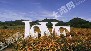 北京延庆区400亩空闲用地合作