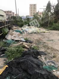 广东中山260平米商业及住宅-宅基地转让