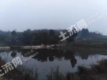 德阳罗江区170亩水库转让