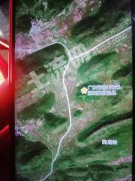 广东清远  有林地 转