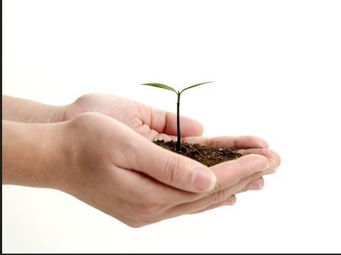 """农业""""三项补贴""""为什么要改?如何改?看看湖南的政策"""