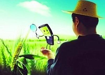 国家力挺农业电商,我们该怎么做呢?