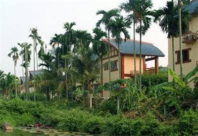海南乡村旅游