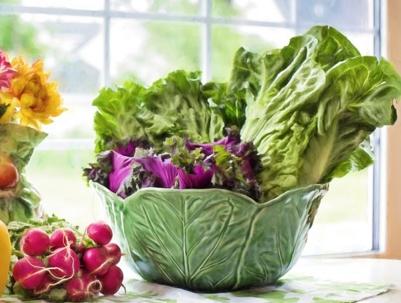 九月份种植什么蔬菜最合适图片