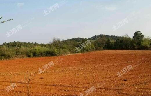 各地农村土地流转总体趋势向好,流转价格上升明显!