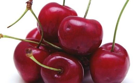 野樱桃种子的种植技术 野樱桃酒有什么好处