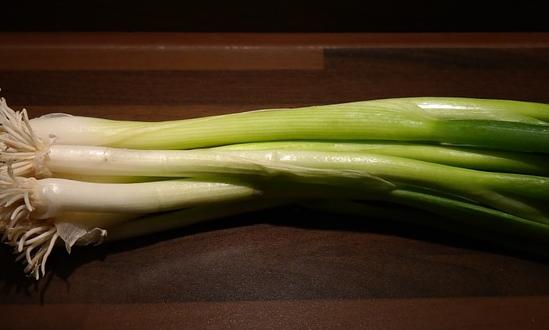 在南方什么时间种葱?种葱应施什么肥料才长得快?