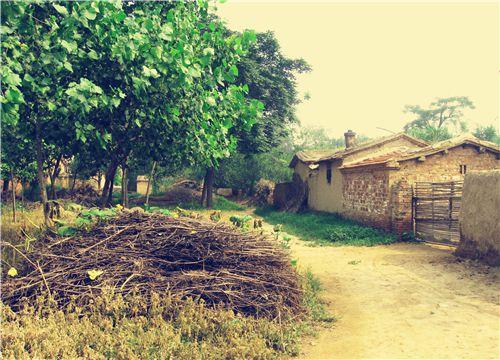 农村宅基地房屋