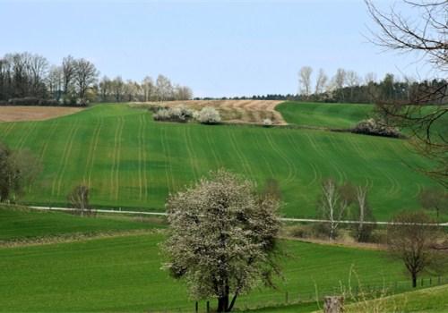 2019年耕地地力保护补贴政策:补贴标准是多少钱一亩?