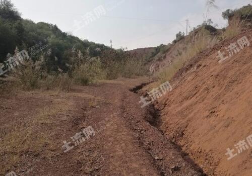 农村荒地承包种植项目