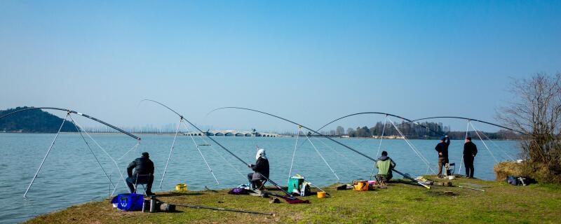 水庫釣魚打窩用什么料