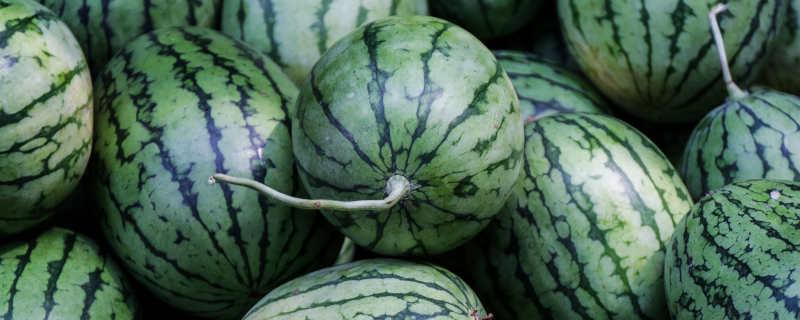 一大堆西瓜