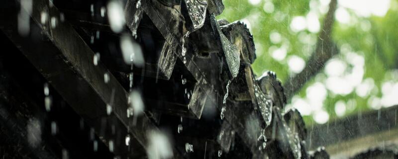 梅雨 時候