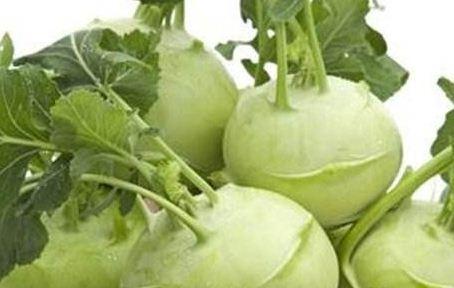 根芥菜施肥方法