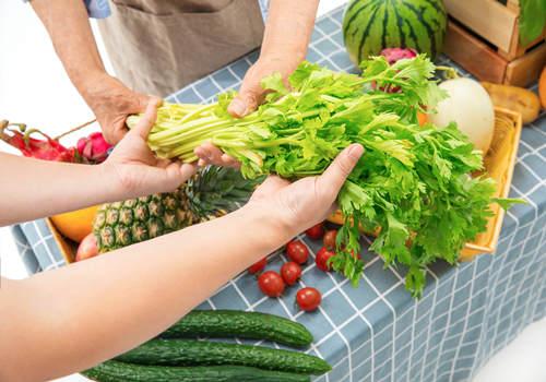 水耕蔬菜种植方法