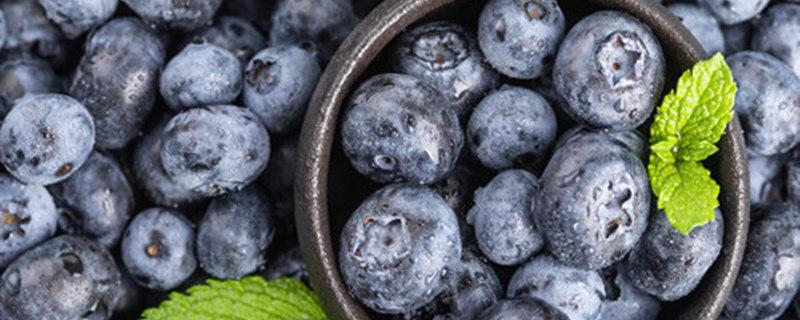 蓝莓苗叶片发红原因
