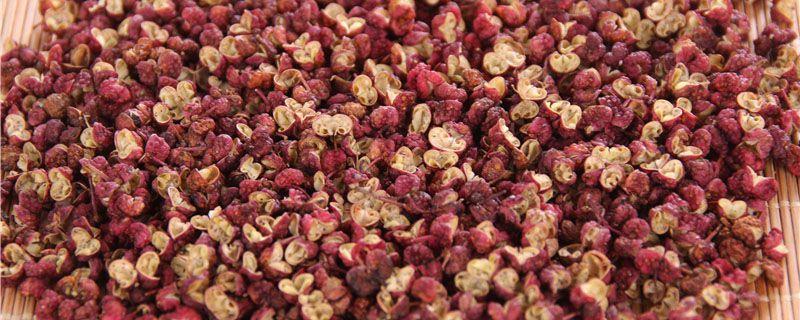 大红袍花椒种植技术