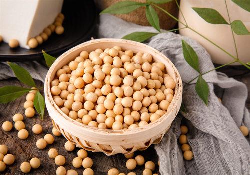 大豆多少钱一斤