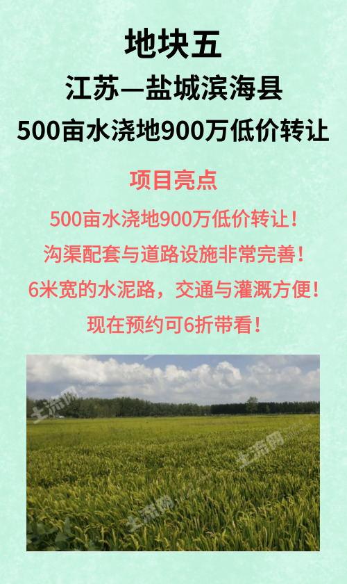 鹽城濱海縣500畝水澆地
