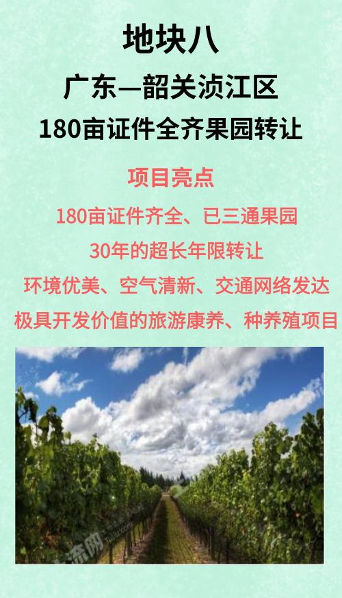 廣東韶關湞江區180畝果園
