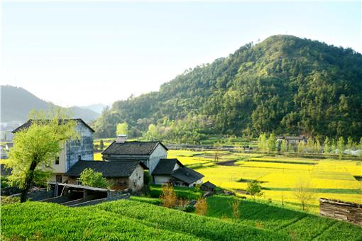 農村土地被征收的補償標準