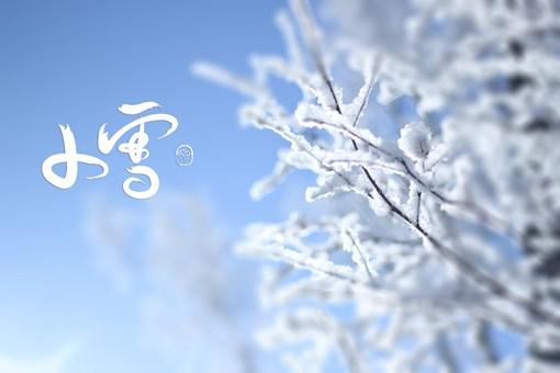 小雪是第几个节气