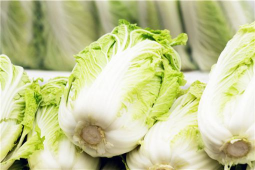 大白菜价格现低谷:大白菜价格多少?为什么现低谷?