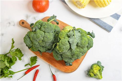 冬季种植蔬菜需要注意什么