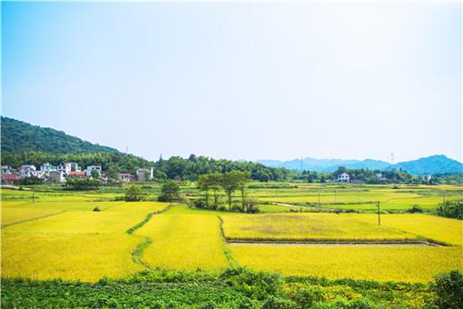 農村土地確權的意義是什么