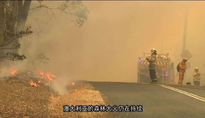烧死近5亿动物,4个月无人理会的澳洲山火,真相有多令人绝望?