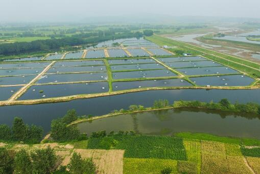 2020年水产养殖扶持政策