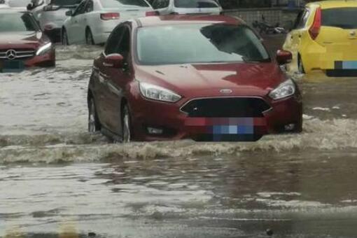 广州雨后路人为什么当街捕鱼