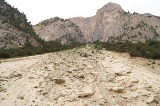 山体滑坡向哪边跑最安全